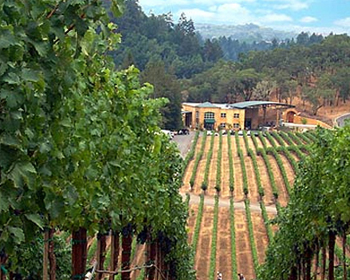 Napa Vineyard Estate Villa