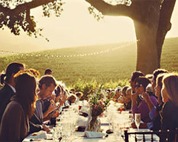 Napa Corporate Event Wine Tasting