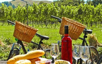 Napa Wine Tasting Bike Ride